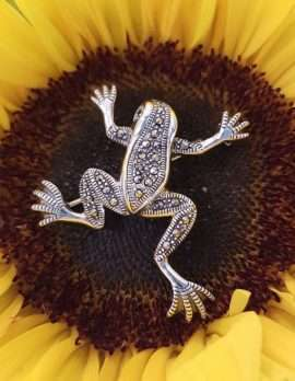 Sterling Silver and marcasite necklace - Frog
