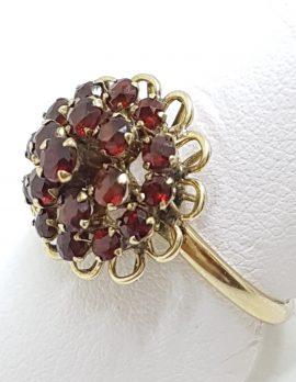 9ct Yellow Gold Round Cluster Garnet Princess Ring